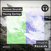 Young Spring by Nature Sounds (1)