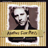 Another Fine Mess by Chesney Hawkes