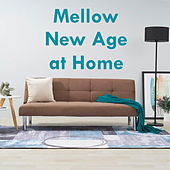 Mellow New Age at Home by Various Artists
