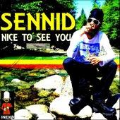 Nice to See You de Sennid