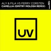 Camellia (Dmitry Molosh Remix) by Aly & Fila