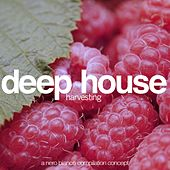 Deep House Harvesting de Various Artists