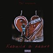 Rebuild A Heart de Quaboogie