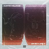 Zip Skylark 2: The Wrath of Danco by Curtis Williams