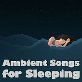 Ambient Songs for Sleeping by Various Artists