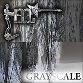 Gray / Scale by Munich Syndrome