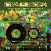 Fiesta Electronica: Melodic House & Techno Essentials 2020 de Various Artists