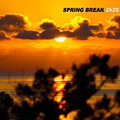 Spring Break 2k20 by Various Artists