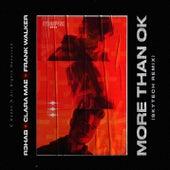 More Than OK (Skytech Remix) by R3HAB