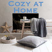 Cozy at Home by Various Artists