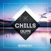 Never Really Liked You (The Remixes, Pt. 2) von Calippo
