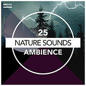 Ambience by Nature Sounds (1)