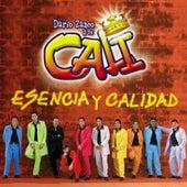 Esencia y Calidad by Grupo Cali