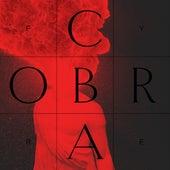 Fyre by Cobra