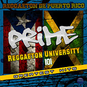 Reggaeton University 101 von Various Artists