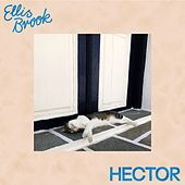 Ellis Brook de Hector