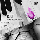 Transcendental Album de Root