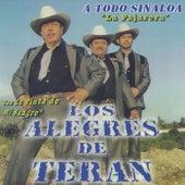 A Todo Sinaloa de Los Alegres de Teran