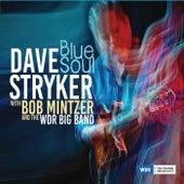 Blue Soul de Dave Stryker