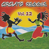 Circuito Reggae, Vol. 12 by Various Artists