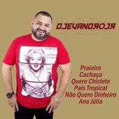 Praieiro / Cachaça / Quero Chiclete / País Tropical / Não Quero Dinheiro / Ana Júlia by Dj Evandro Jr e Xiado da Xinela