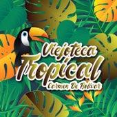 Viejoteca Tropical / Carmen De Bolivar de Los Melódicos, Anibal Velasquez, Los Corraleros De Majagual, Alejandro Durán