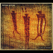 A Life of Signs by Tritone Asylum