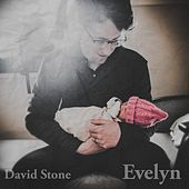 Evelyn by David Stone