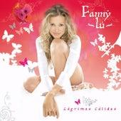 Lágrimas Cálidas de Fanny Lu