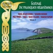 Festival De Musiques Irlandaises Vol. 2 (Musiques Celtiques) by Various Artists