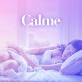 Calme de Various Artists