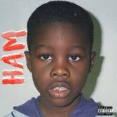 HAM by Darnell Williams