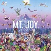 My Vibe fra Mt. Joy