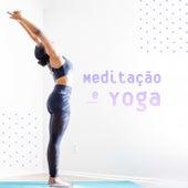 Meditação e Yoga de Various Artists