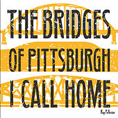 The Bridges of Pittsburgh I Call Home de Ray Pelletier