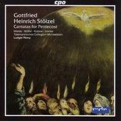 Stolzel: 6 Pentecost Cantatas (Pentecost 1737) by Various Artists