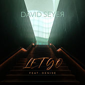 Let Go by David Seyer