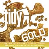 Tidy Gold von Lisa Pin-Up