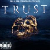 Trust by Sink Or Swim Ent LLC