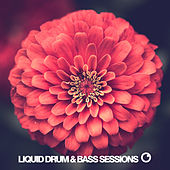 Liquid Drum & Bass Sessions 2020 Vol 8 by Various Artists