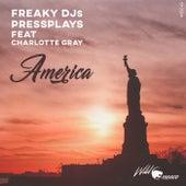 America de Freaky DJ's