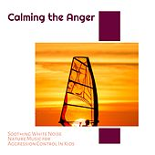 Calming the Anger - Soothing White Noise Nature Music for Aggression Control In Kids von Various