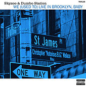 We (Used to) Live in Brooklyn, Baby by Skyzoo
