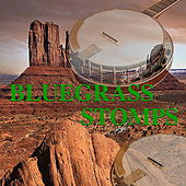 Bluegrass Stomps de Various Artists