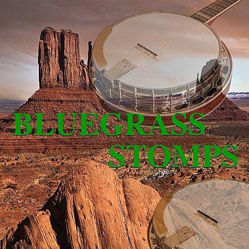 Bluegrass Stomps by Various Artists
