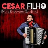 Num Entreveiro Gaudério de Cesar Filho