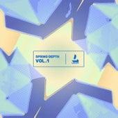 Spring Depth ; Vol.1 fra Various Artists