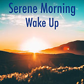 Serene Morning Wake Up by Various Artists