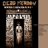 Peel Sessions von Dead Meadow