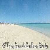 47 Easy Sounds for Easy Study de Lullabies for Deep Meditation